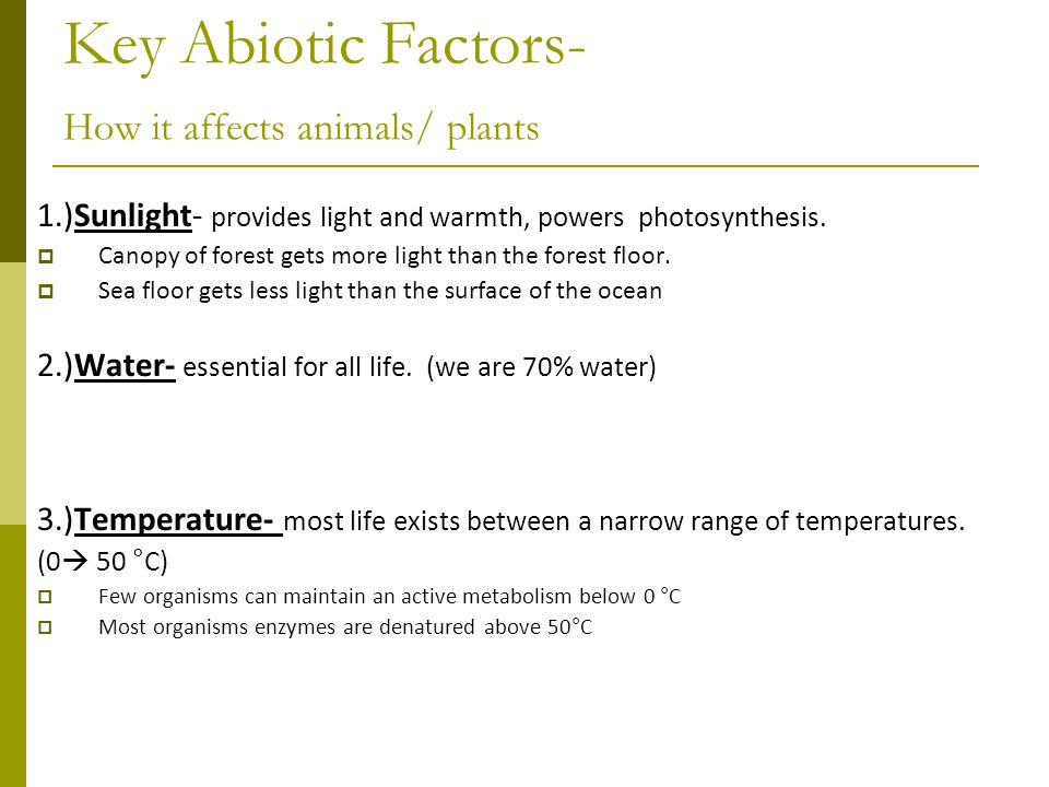 Key Abiotic Factors- How it affects animals/ plants