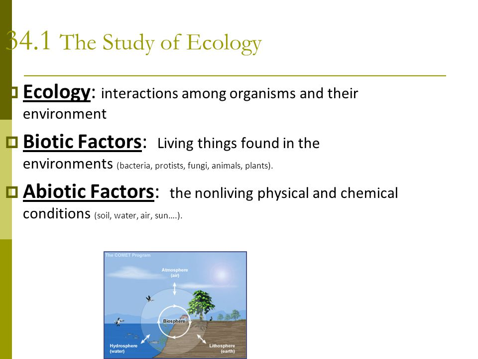 34.1 The Study of Ecology Ecology: interactions among organisms and their environment.