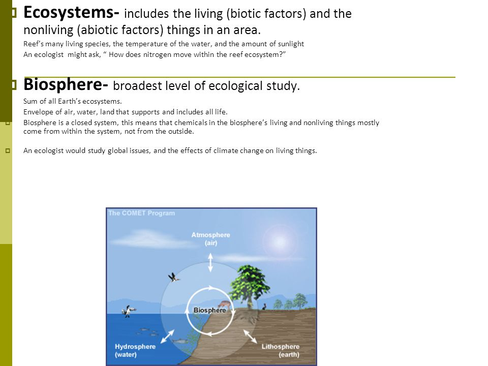 Biosphere- broadest level of ecological study.