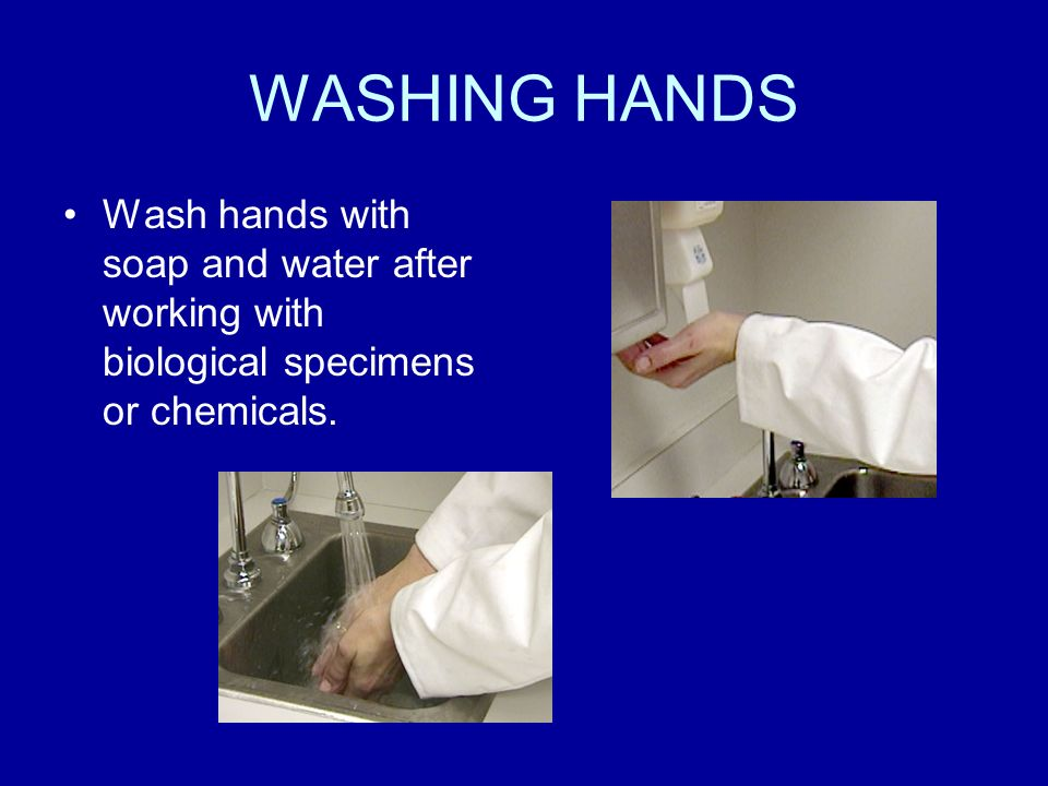 WASHING HANDS Wash hands with soap and water after working with biological specimens or chemicals.