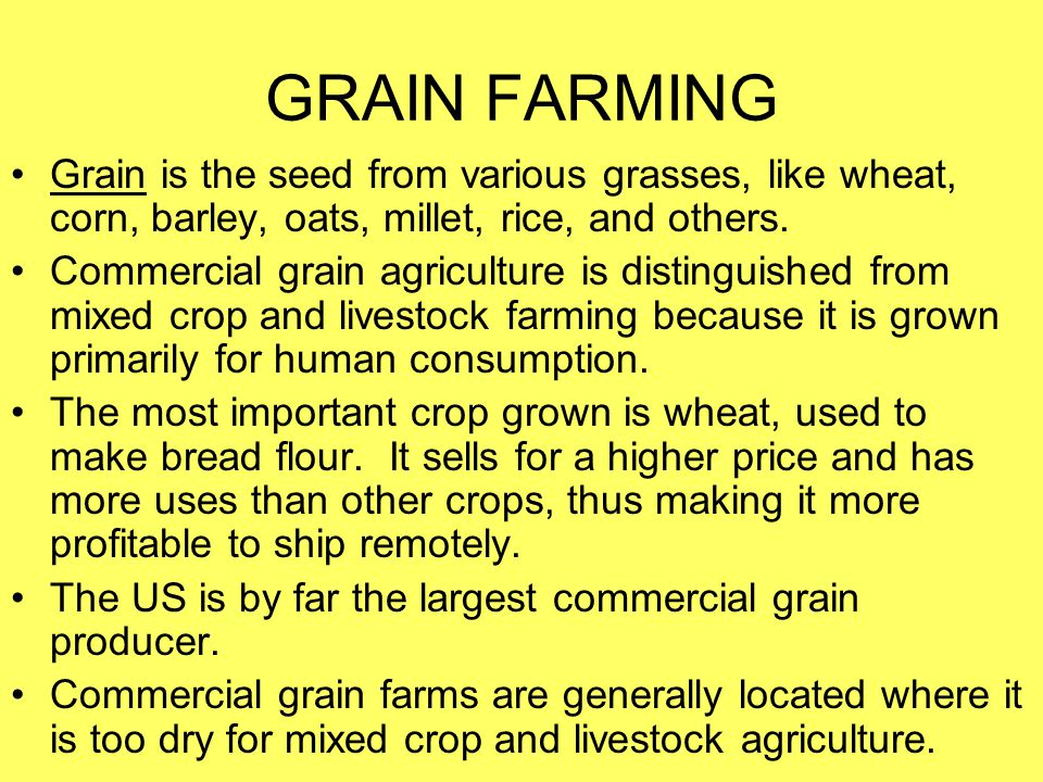 GRAIN FARMING Grain is the seed from various grasses, like wheat, corn, barley, oats, millet, rice, and others.