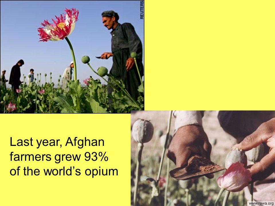 Last year, Afghan farmers grew 93% of the world's opium
