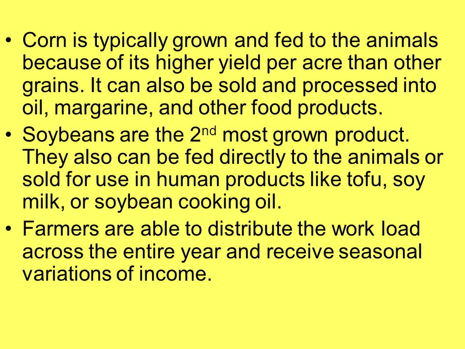 Corn is typically grown and fed to the animals because of its higher yield per acre than other grains. It can also be sold and processed into oil, margarine, and other food products.