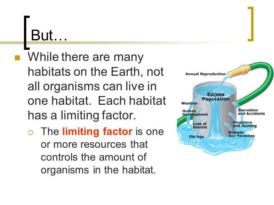 But… While there are many habitats on the Earth, not all organisms can live in one habitat. Each habitat has a limiting factor.