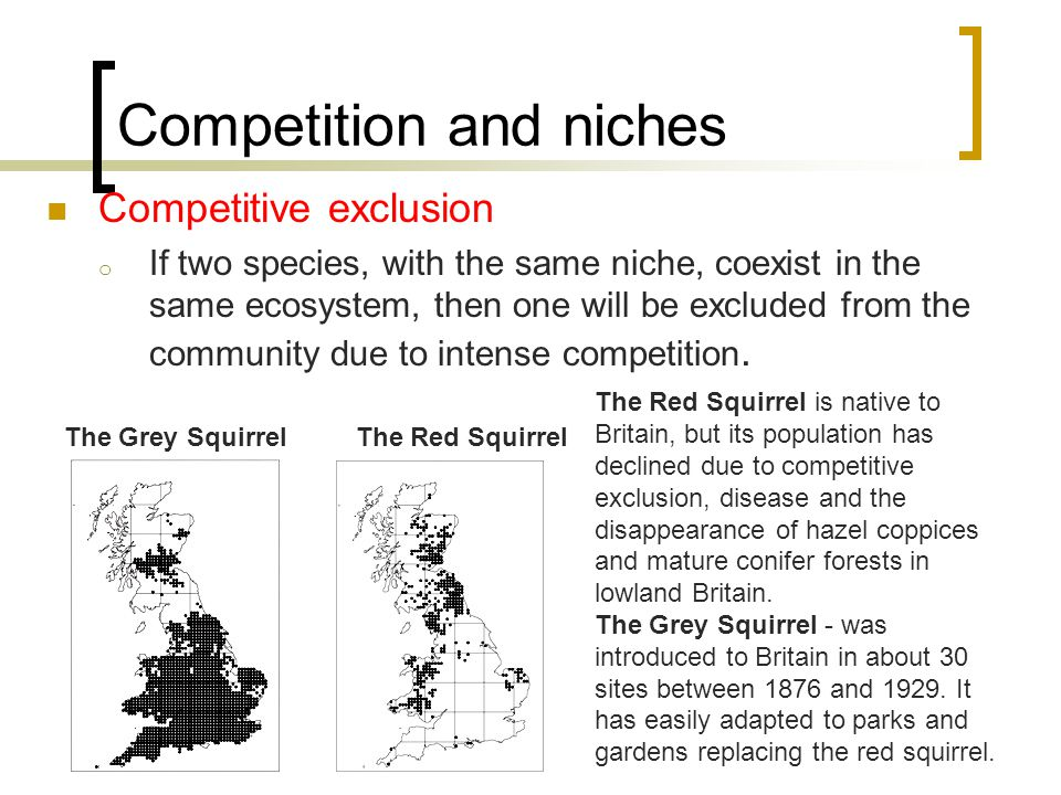 Competition and niches