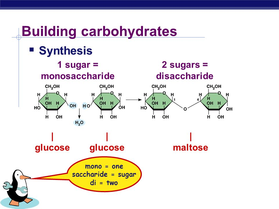 Building carbohydrates