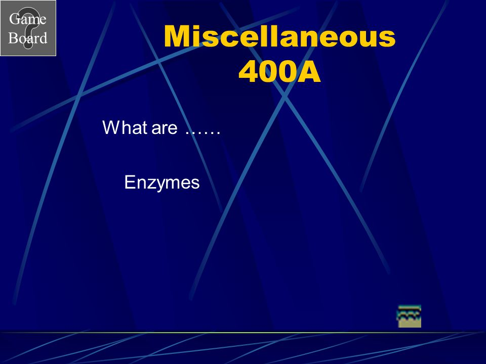 Miscellaneous 400A What are …… Enzymes