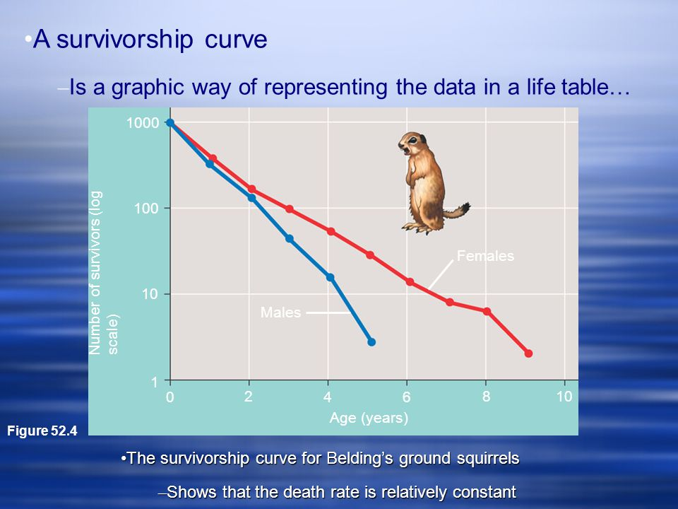 A survivorship curve Is a graphic way of representing the data in a life table… Figure