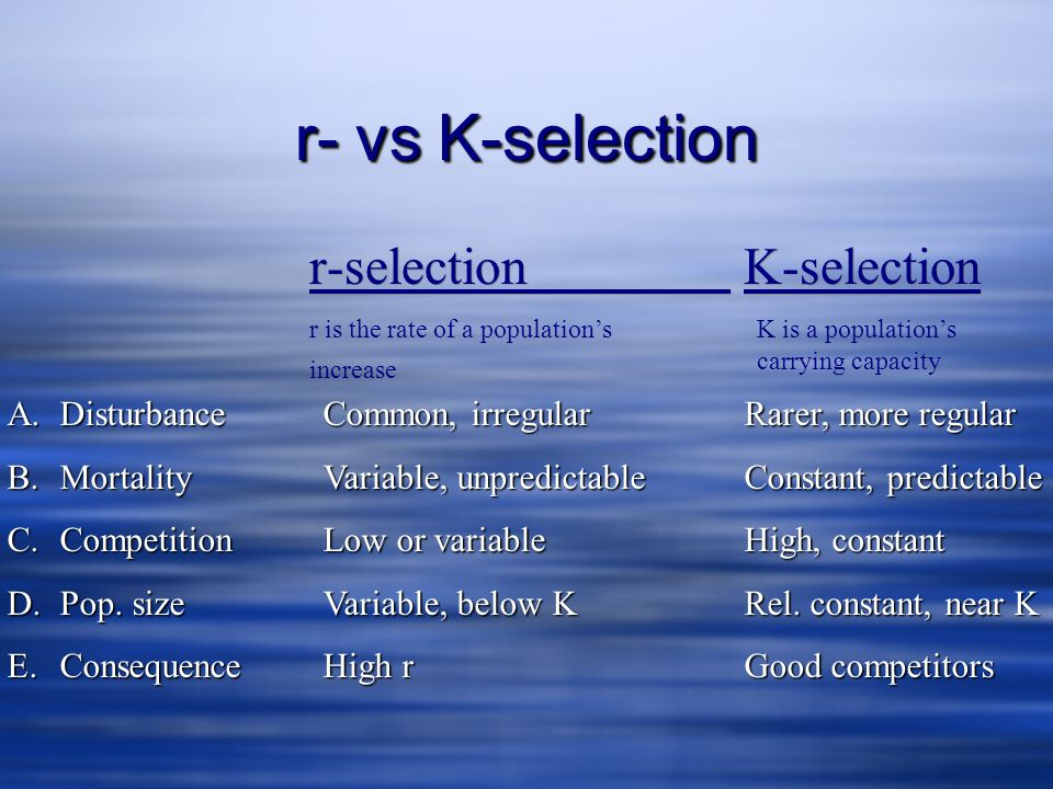 r- vs K-selection r-selection K-selection