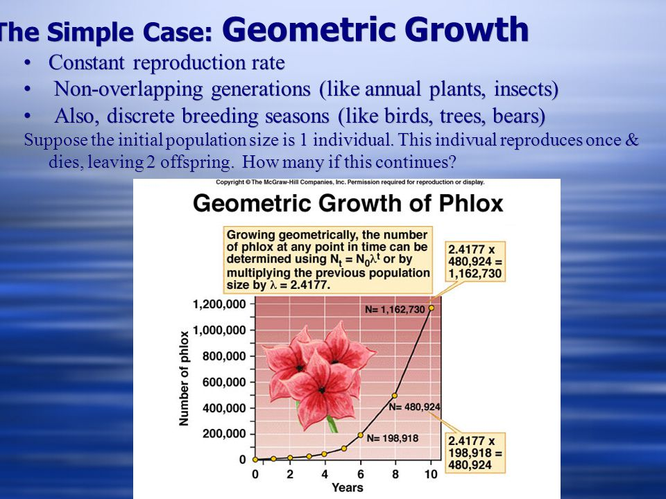 The Simple Case: Geometric Growth
