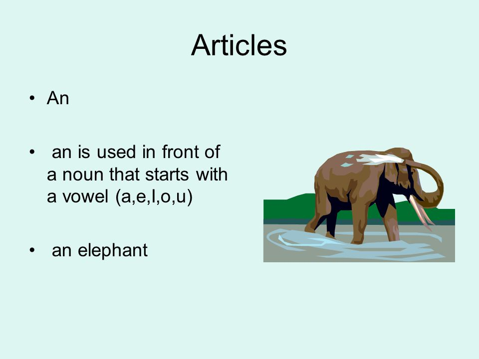 Articles An an is used in front of a noun that starts with a vowel (a,e,I,o,u) an elephant