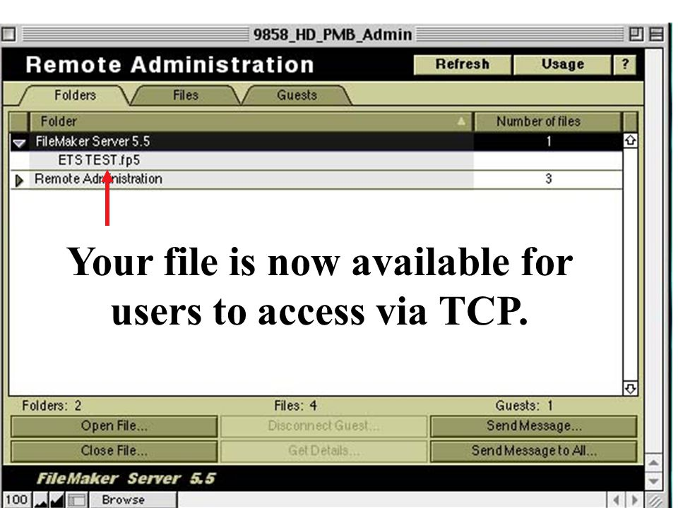 Your file is now available for users to access via TCP.