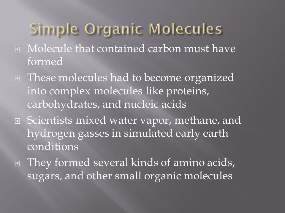 Simple Organic Molecules