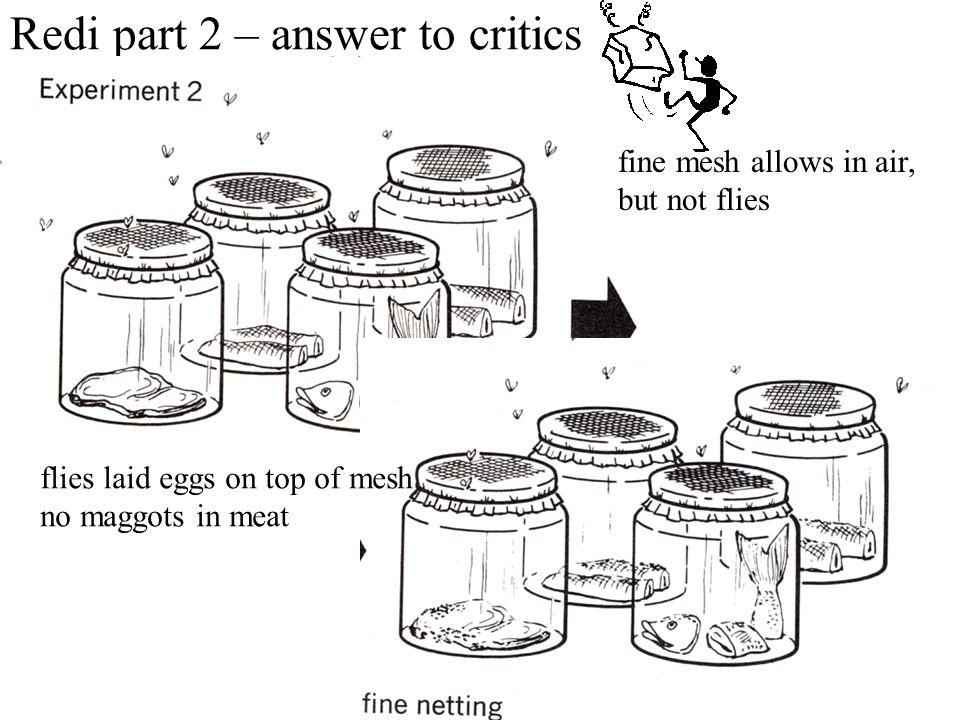Redi part 2 – answer to critics