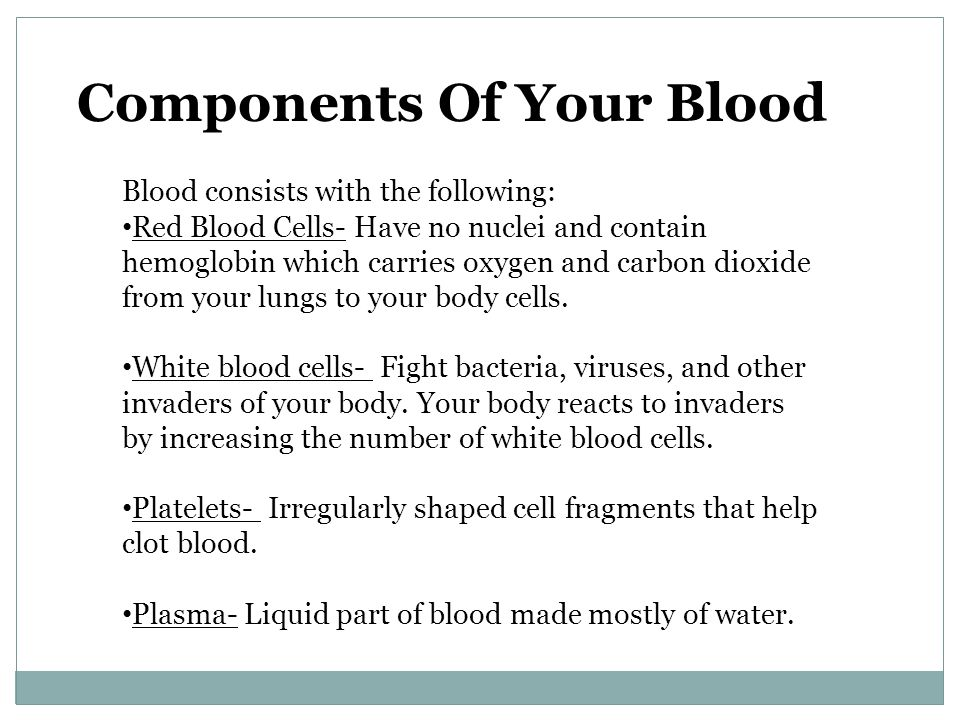 Components Of Your Blood