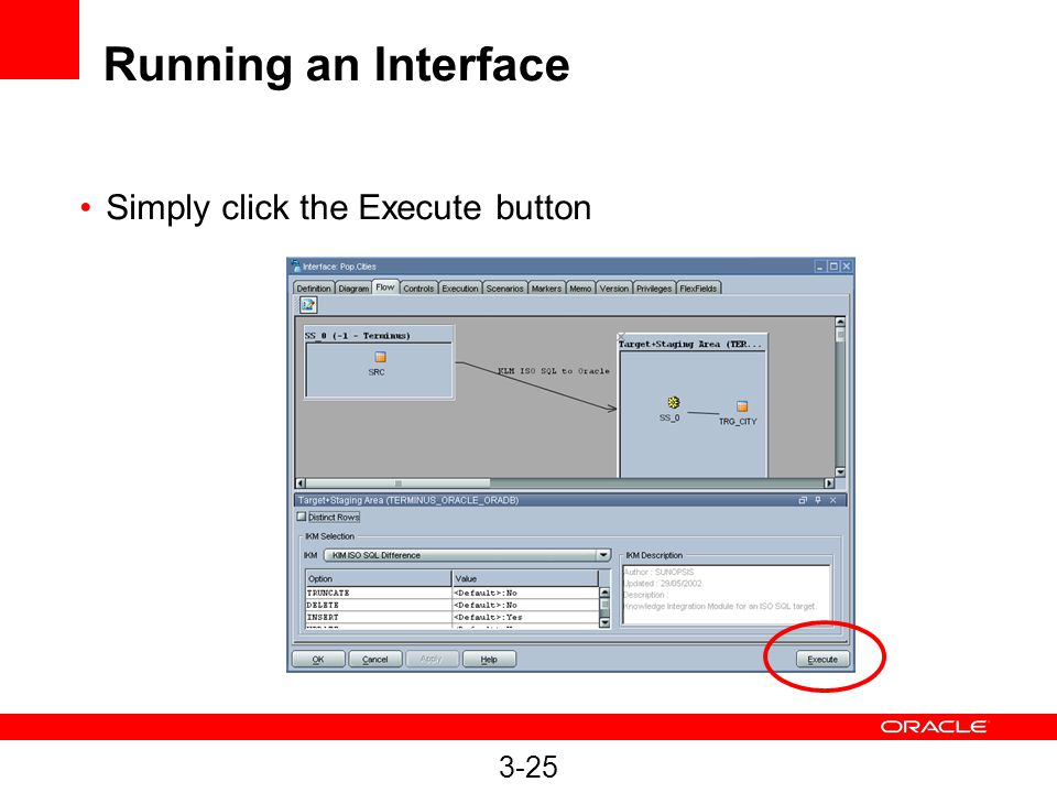 Running an Interface Simply click the Execute button 3-25