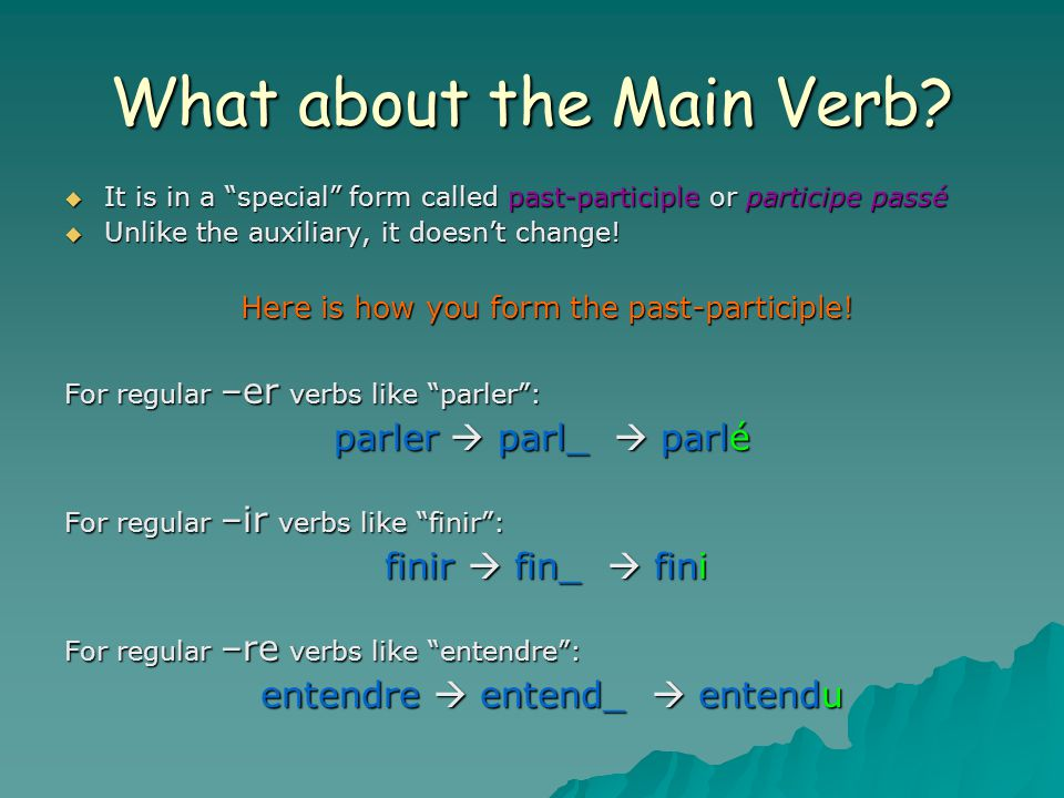 What about the Main Verb