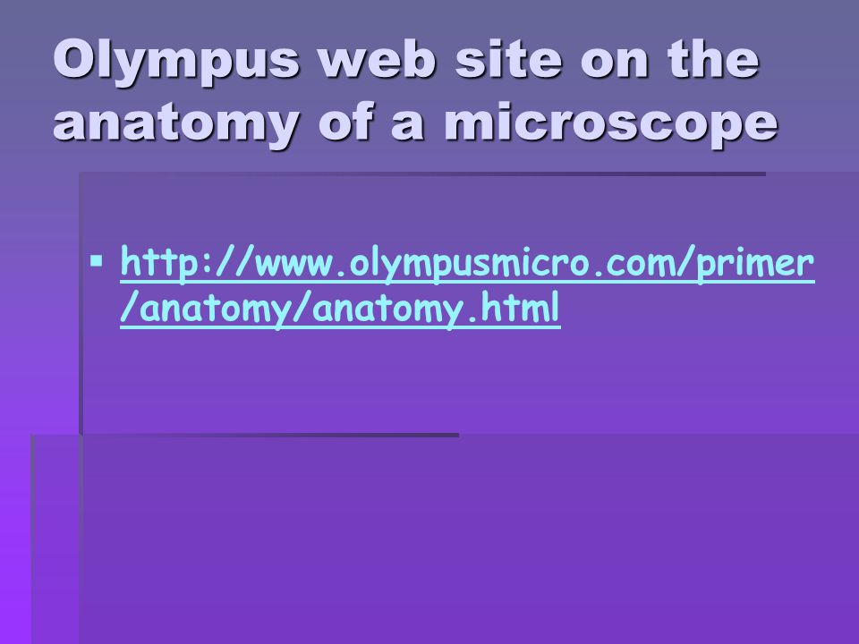 Olympus web site on the anatomy of a microscope