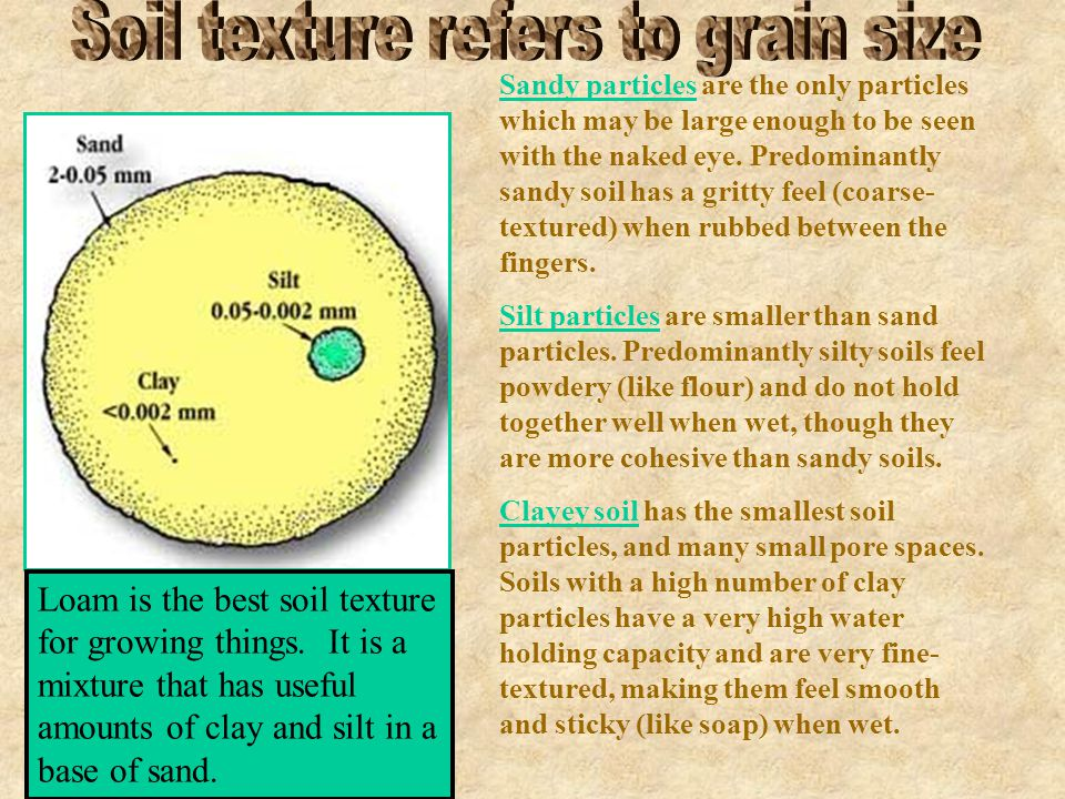 Soil texture refers to grain size