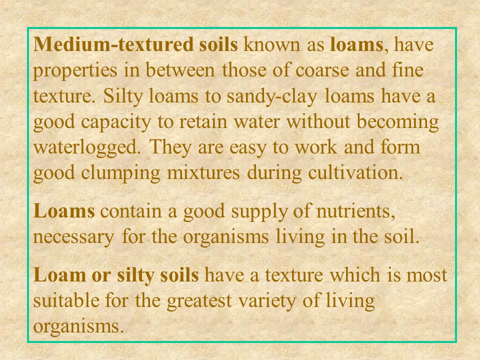 Medium-textured soils known as loams, have properties in between those of coarse and fine texture. Silty loams to sandy-clay loams have a good capacity to retain water without becoming waterlogged. They are easy to work and form good clumping mixtures during cultivation.