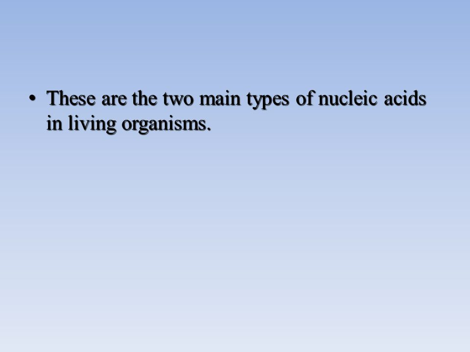 These are the two main types of nucleic acids in living organisms.