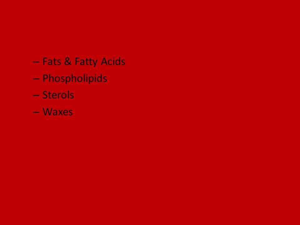 Fats & Fatty Acids Phospholipids Sterols Waxes