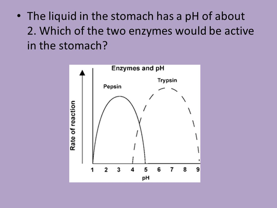 The liquid in the stomach has a pH of about 2
