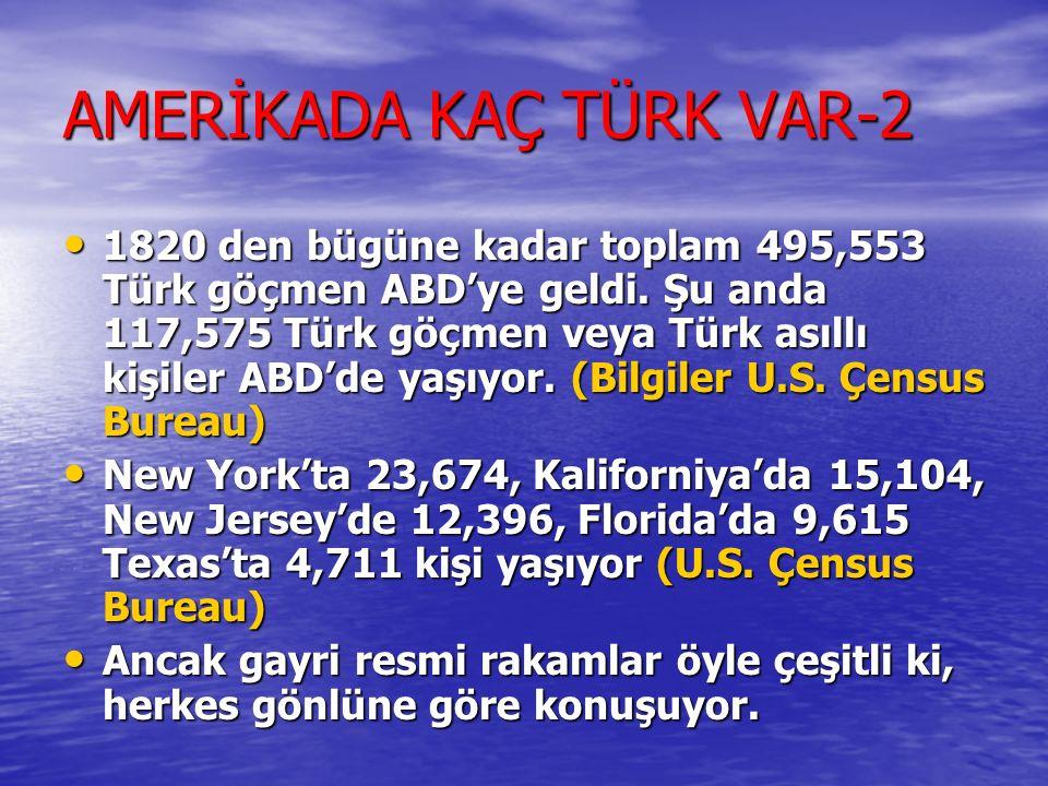 AMERİKADA KAÇ TÜRK VAR-2
