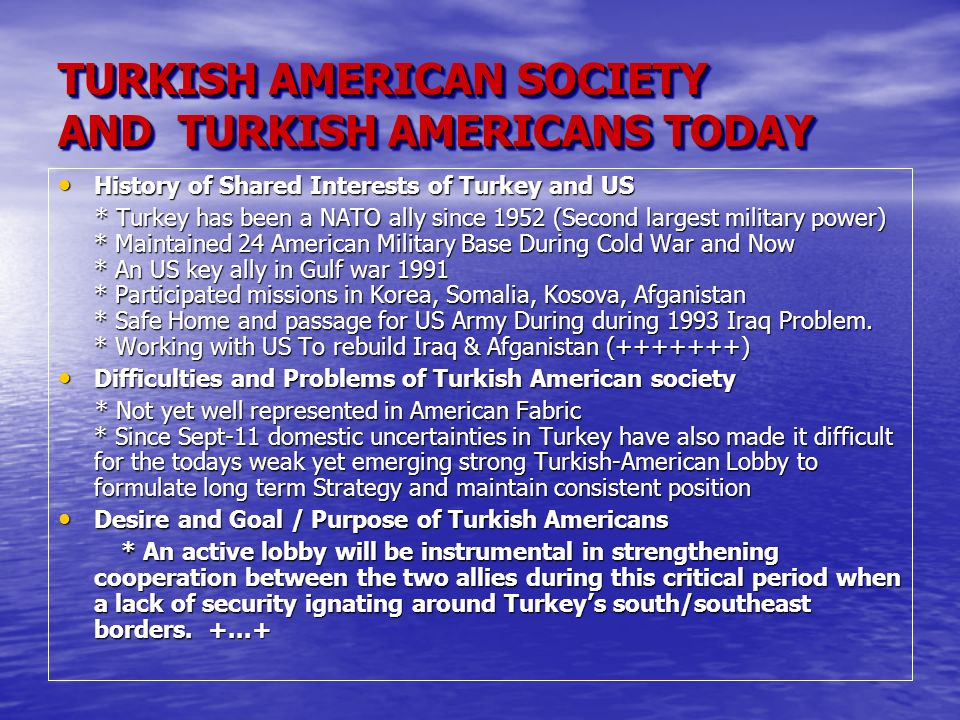 TURKISH AMERICAN SOCIETY AND TURKISH AMERICANS TODAY