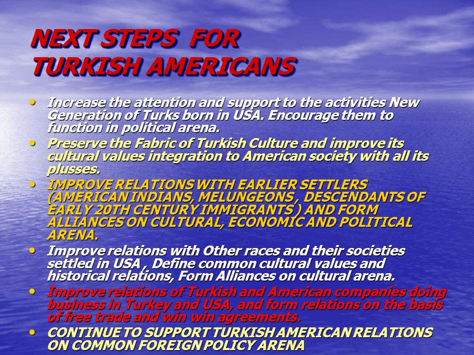 NEXT STEPS FOR TURKISH AMERICANS