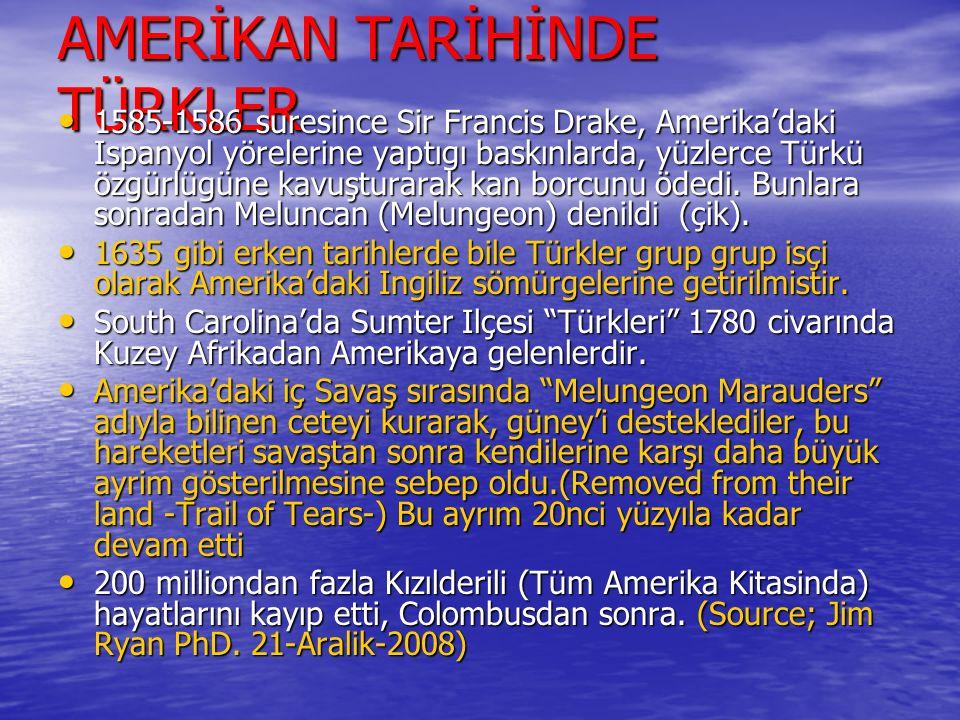 AMERİKAN TARİHİNDE TÜRKLER