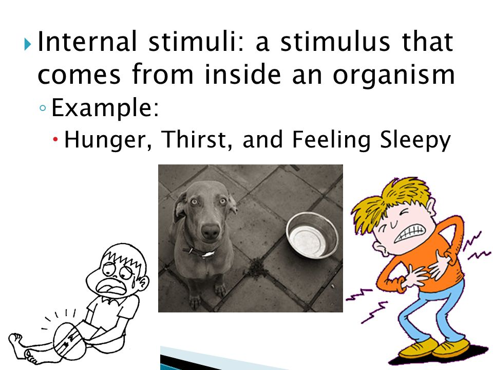 Internal stimuli: a stimulus that comes from inside an organism