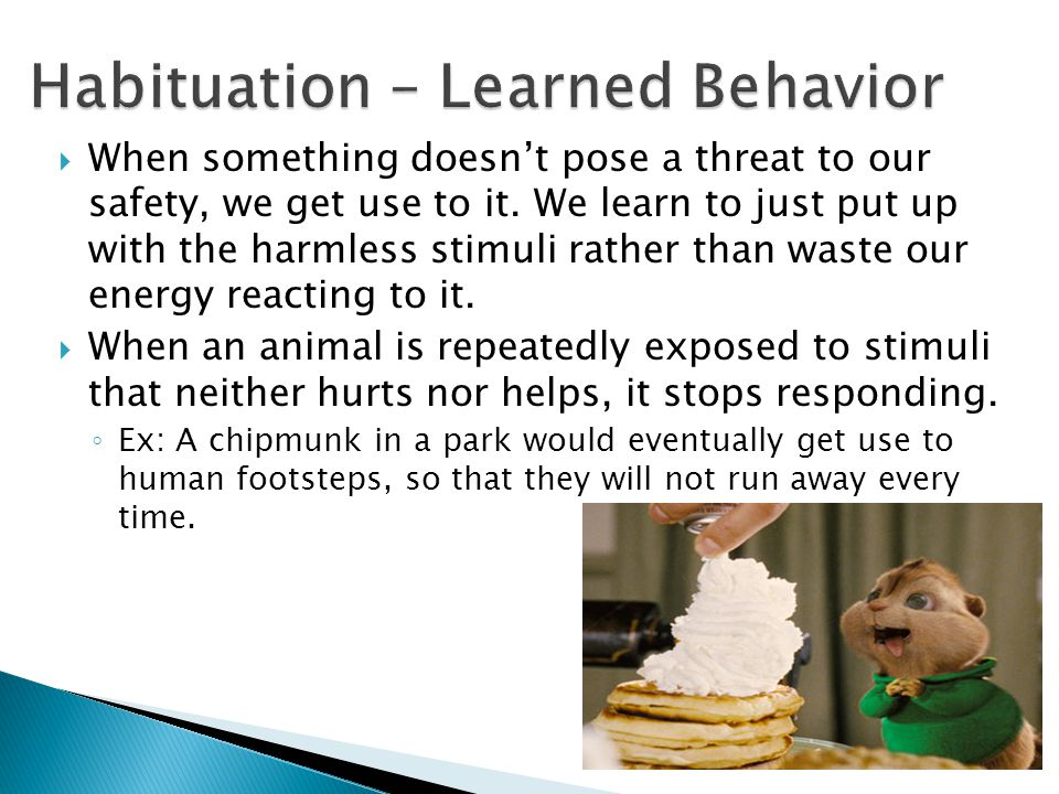 Habituation – Learned Behavior