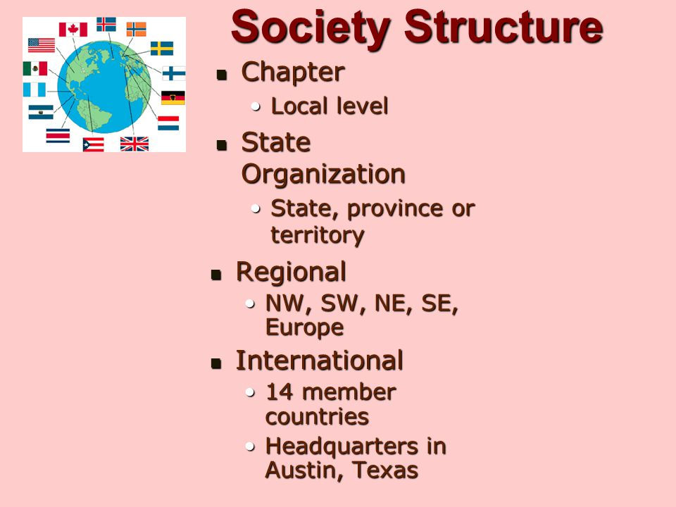 Society Structure Chapter State Organization Regional International