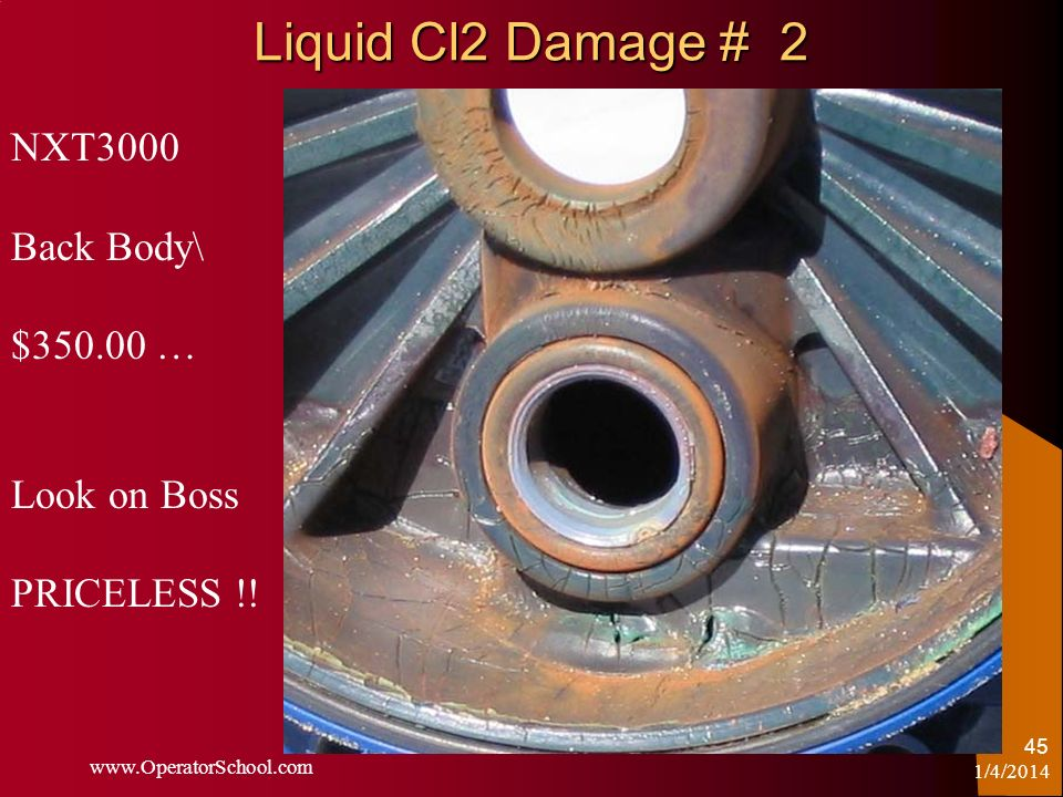 Liquid Cl2 Damage # 2 NXT3000 Back Body\ $ … Look on Boss