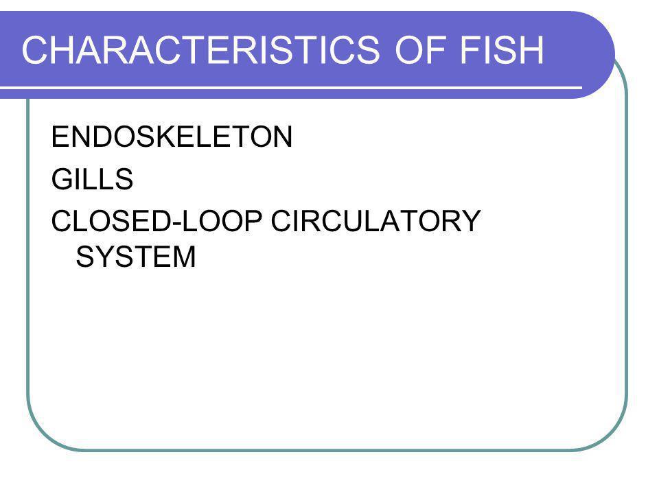 CHARACTERISTICS OF FISH
