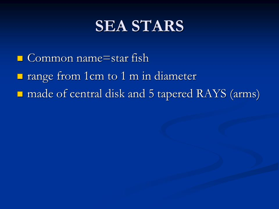 SEA STARS Common name=star fish range from 1cm to 1 m in diameter