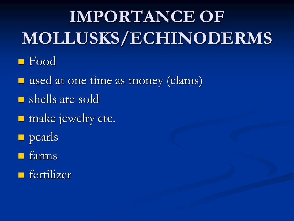 IMPORTANCE OF MOLLUSKS/ECHINODERMS
