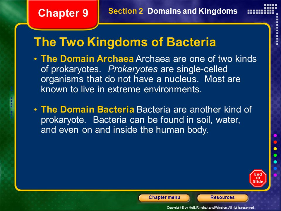 The Two Kingdoms of Bacteria