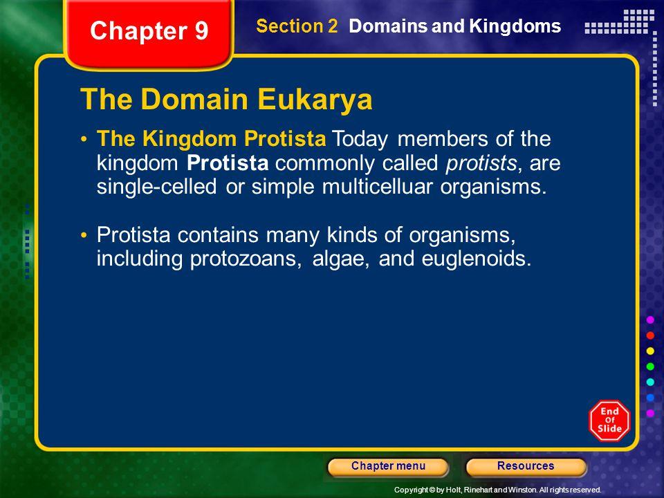 The Domain Eukarya Chapter 9
