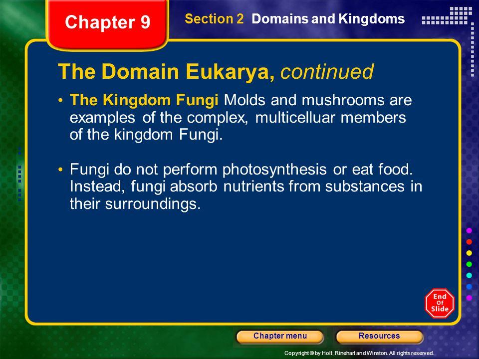 The Domain Eukarya, continued