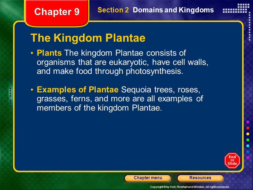 The Kingdom Plantae Chapter 9