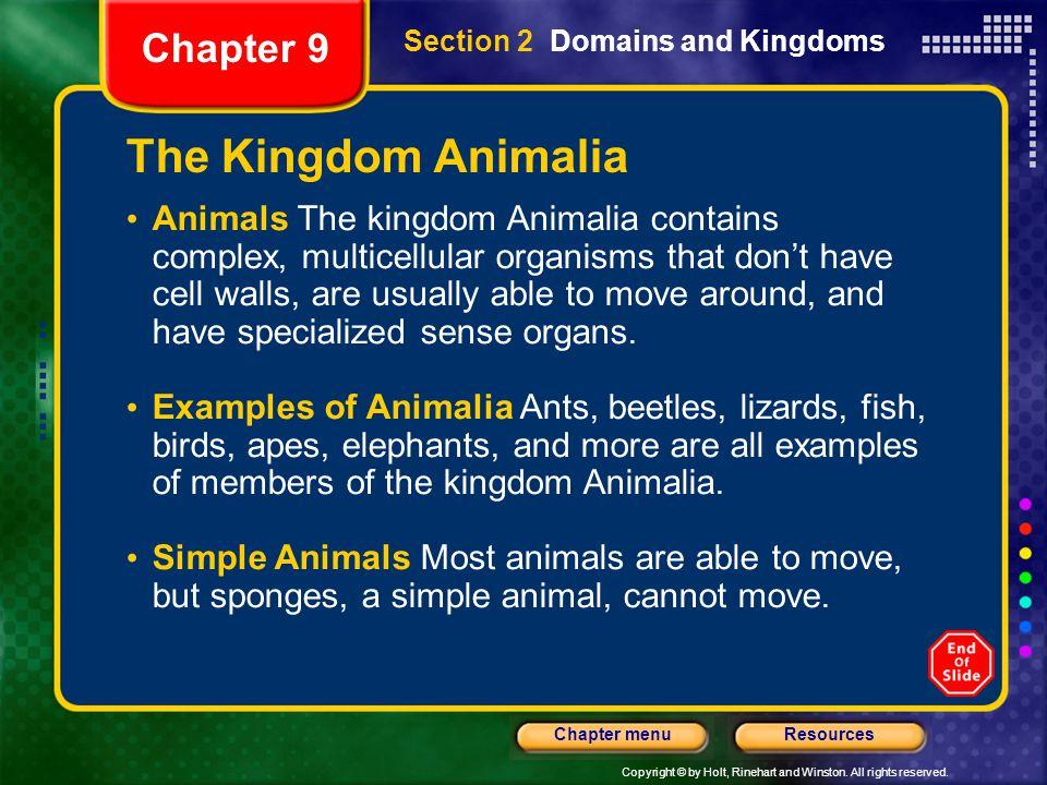 The Kingdom Animalia Chapter 9