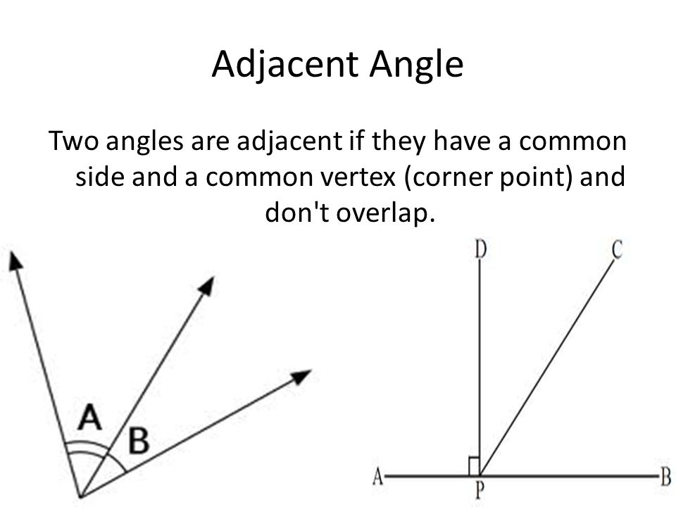 Adjacent Angle Two angles are adjacent if they have a common side and a common vertex (corner point) and don t overlap.