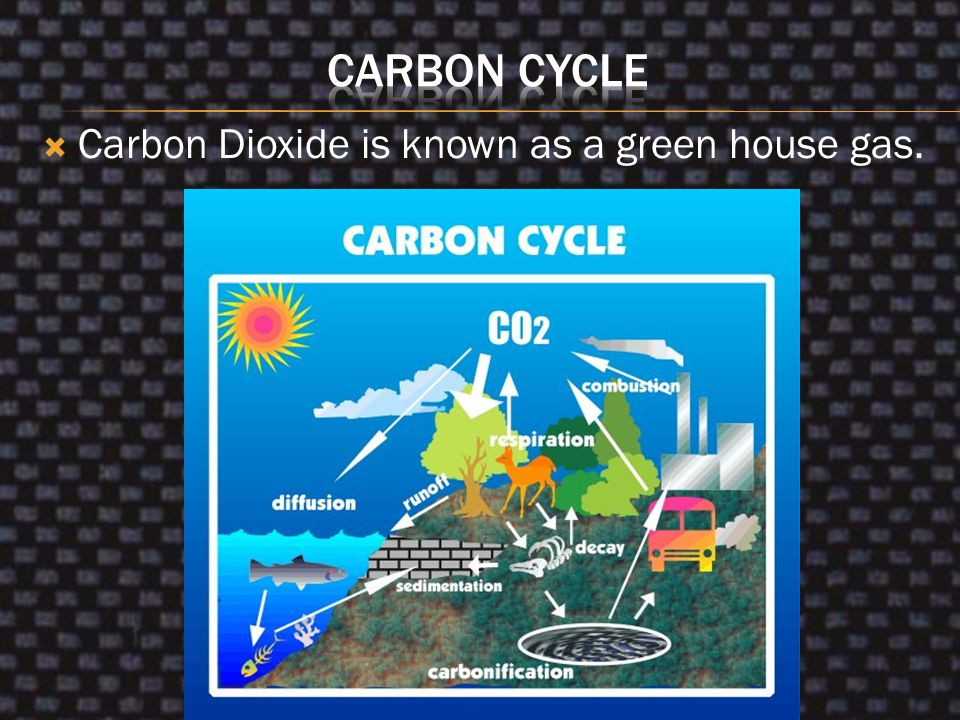 Carbon Cycle Carbon Dioxide is known as a green house gas.