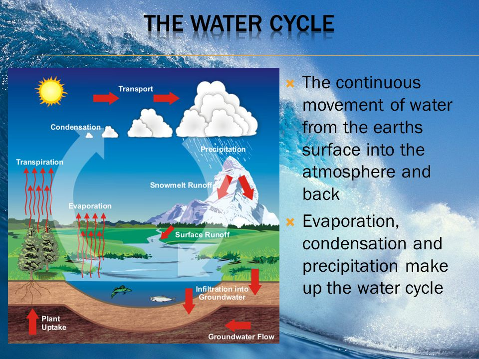 ThE Water Cycle The continuous movement of water from the earths surface into the atmosphere and back.