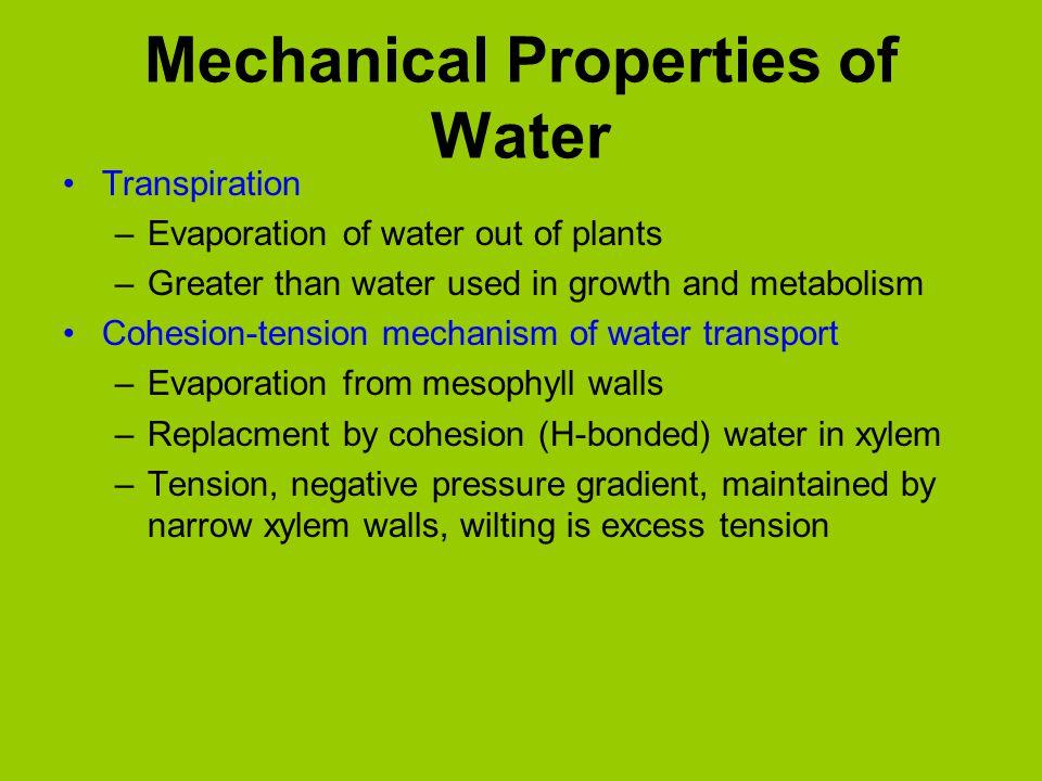 Mechanical Properties of Water