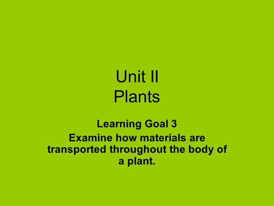Examine how materials are transported throughout the body of a plant.