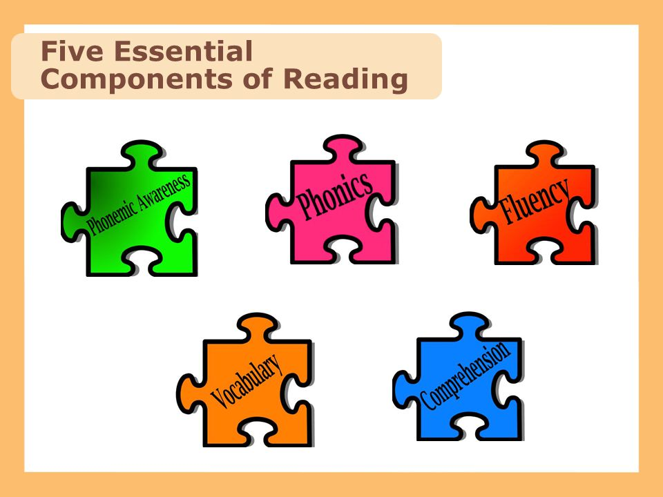 Five Essential Components of Reading
