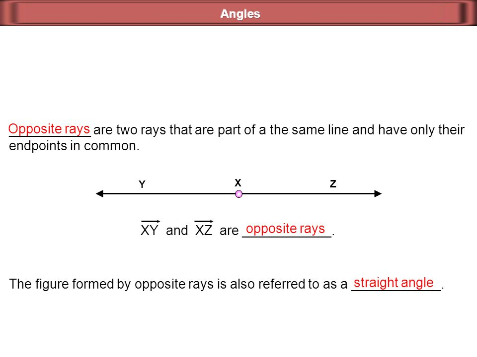 XY and XZ are ____________. opposite rays